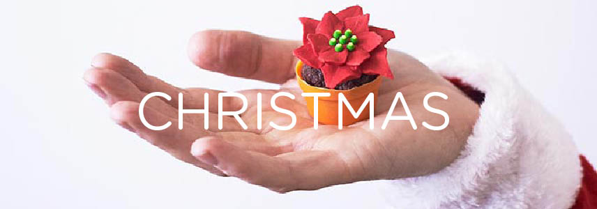 Christmas Treat Tutorials
