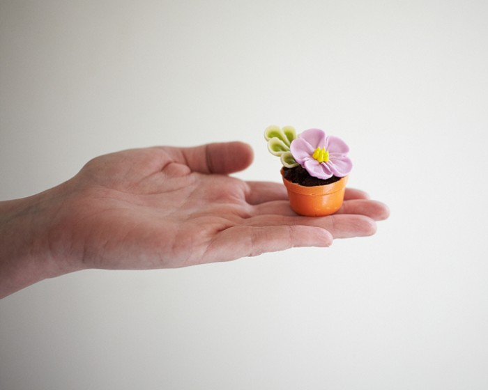 How To Make Mini Flower Pot Cakes | Cakegirls Step x Step