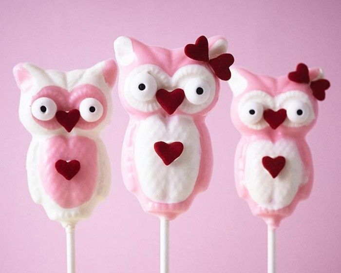 How To Make Chocolate Owl Suckers for Valentine's Day | Cakegirls Step x Step Tutorials with Shoppable Supplies