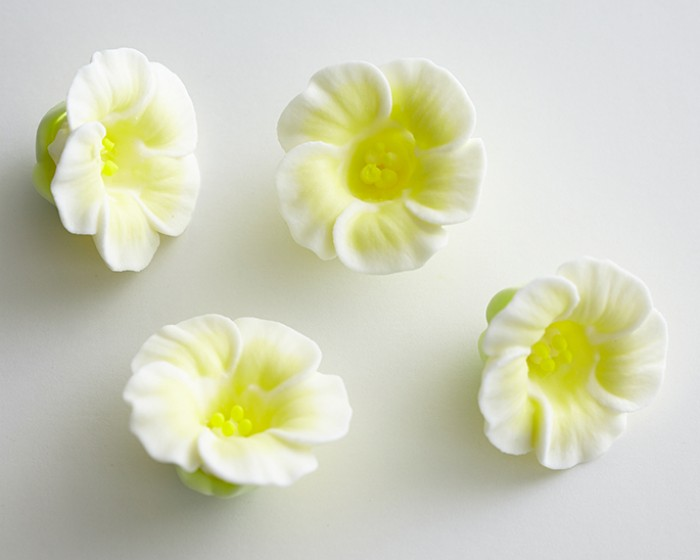 Light yellow royal icing petunia flowers set of 4 cakegirls edible pre made light yellow white royal icing petunia flowers mightylinksfo
