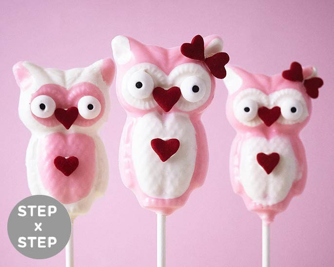 How To Make Cutie Chocolate Owl Suckers Cakegirls