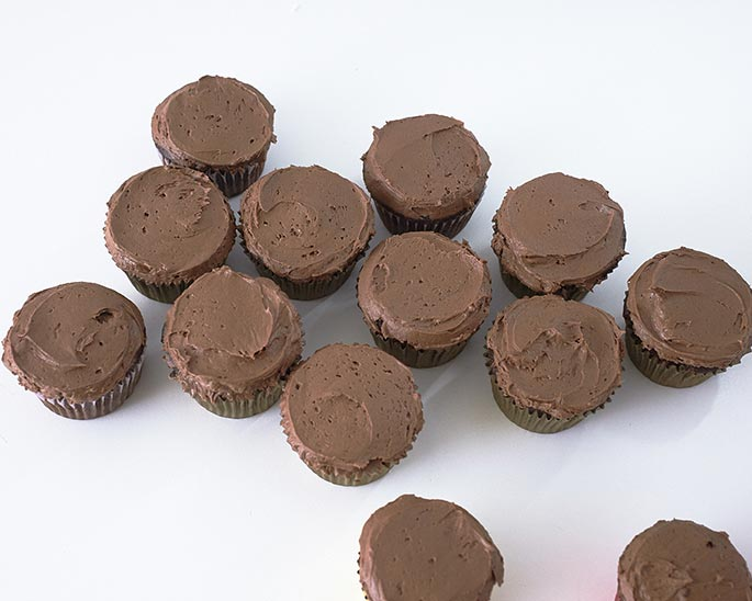 Homemade chocolate cupcakes with chocolate frosting