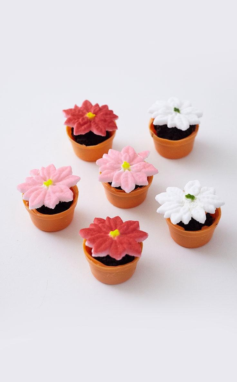 Mini Poinsettia Cakes Tutorial Cakegirls