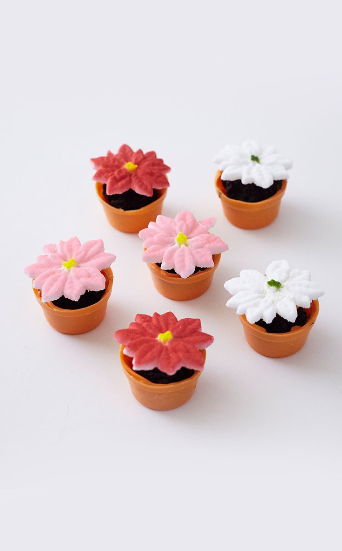 Mini Red Poinsettia Pot Cakes Step x Step